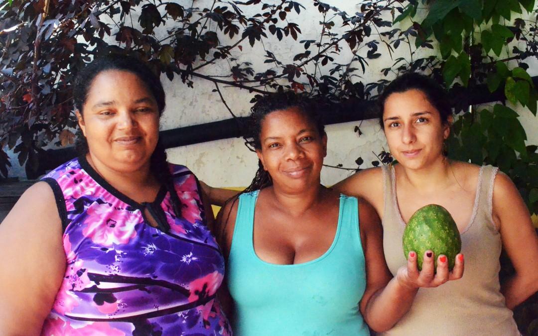 Alimentos agroecológicos produzidos por mulheres chegam a São Paulo para comercialização