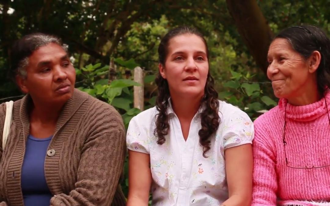 Novo curta-metragem resgata experiências das mulheres na agroecologia