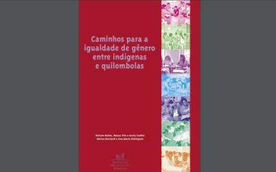 Caminhos para a igualdade de gênero entre indígenas e quilombolas (2006)