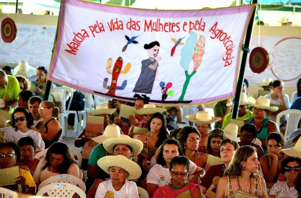 A nossa luta é todo dia: Feminismo pela agroecologia e pela democracia