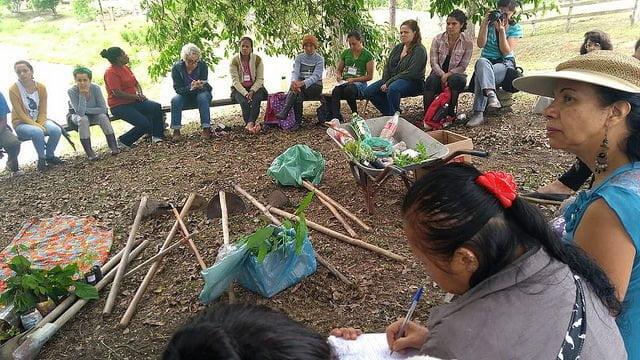 Economia feminista, uma forma de organização que tem mudado vidas no Vale do Ribeira