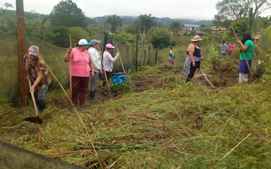 Como foi o Mutirão de práticas agroecológicas, economia feminista e solidária no Vale do Ribeira | por Nilce Pontes Pereira