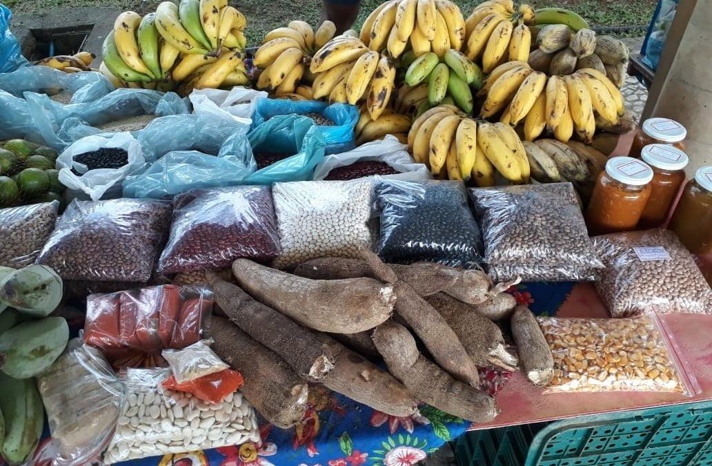 Feira de Agroecologia e Economia Solidária de Registro completa um ano