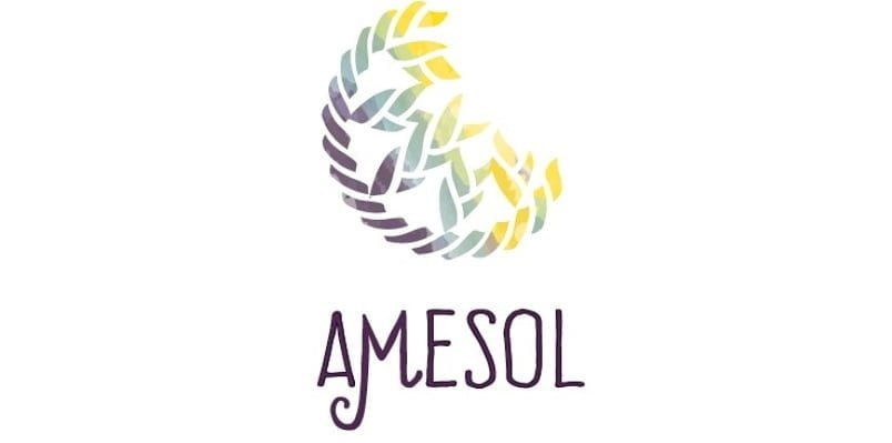 AMESOL começa 2020 de cara nova