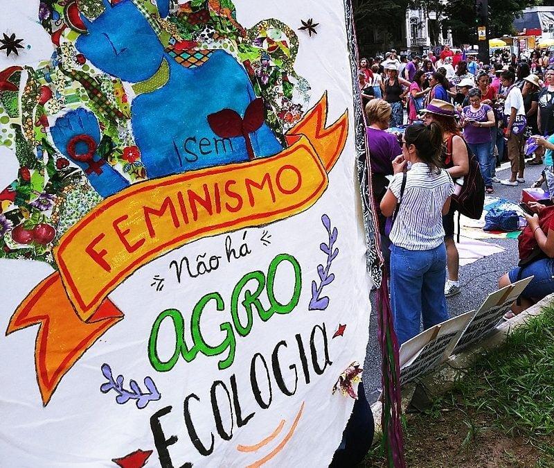 Coluna Sempreviva | Mulheres em rede, agroecologia, cuidados e resistências no Fórum Popular da Natureza