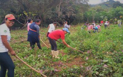 SOF e Instituto Federal de São Paulo apresentam Curso Experimental Técnico em Agroecologia voltado para mulheres agricultoras durante consulta pública